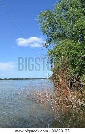 Calarasi Danube River