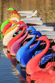 picture of pedal  - A row of colorful is pedal boats - JPG