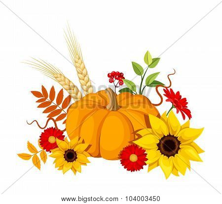 Autumn pumpkin and flowers. Vector illustration.