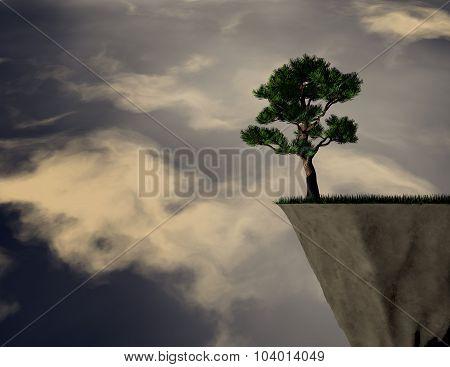 Lonely Pine Tree.