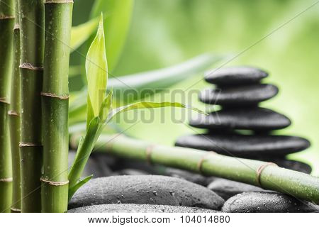still life with zen basalt stones and bamboo