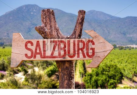 Salzburg wooden sign with field background