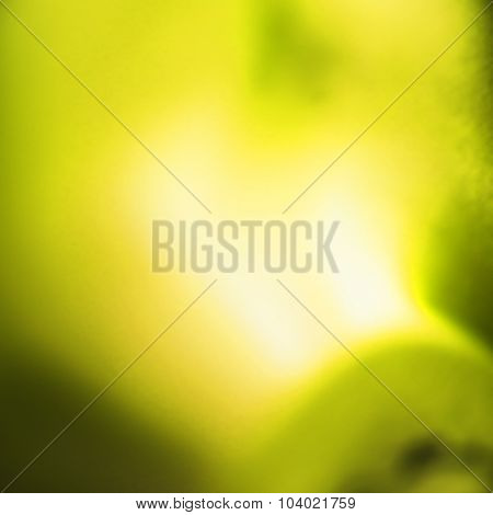 Abstract defocusedyellow blurred background through the Looking Glass