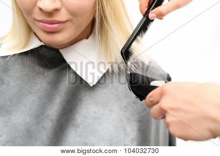 Woman hairdresser cuts hair tips