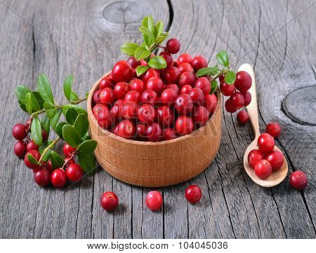 Cranberries In Wooden Bowl