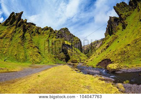 At the bottom of canyon flows small creek fast. Summer blooming Iceland. Pakgil Canyon - green grass and moss on rocks
