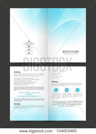 Creative professional Business Brochure, Flyer, Banner or Template with glossy abstract design.
