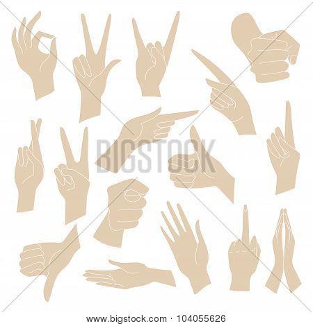 Vector Illustrations Set of universal gestures of hands. Hands in different interpretations.