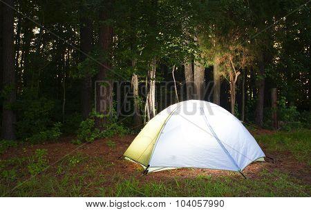 Bright Tent