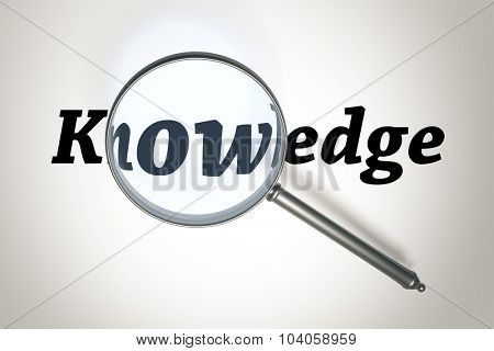 An image of a magnifying glass and the word knowledge