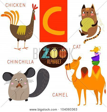Cute Zoo Alphabet In Vector.c Letter. Funny Cartoon Animals:chicken,cat,chinchilla,camel. Alphabet D