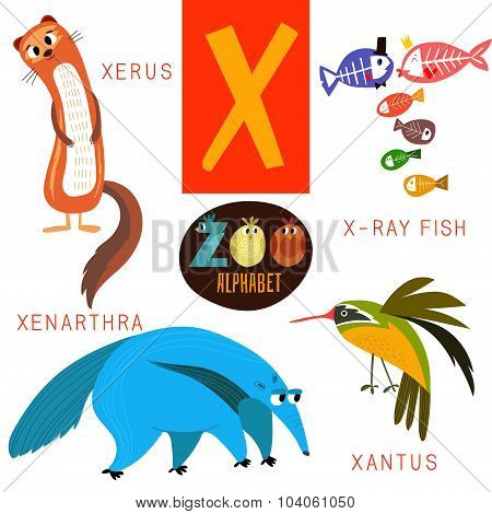 Cute Zoo Alphabet In Vector.x Letter. Funny Cartoon Animals:xerus,x-ray Fish,xenarthra,xantus. Alpha