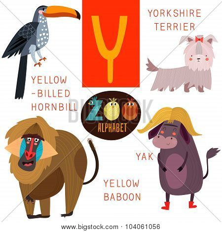 Cute Zoo Alphabet In Vector.y Letter. Funny Cartoon Animals:yellow-billed Hornbill,yorkshire Terrier