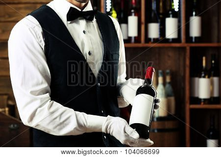 Bartender working on bar background