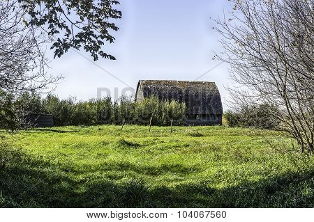 Abandoned Barn And Homestead