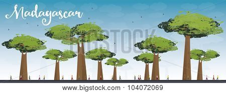 Madagascar skyline silhouette with baobabs with green foliage. Vector illustration. Nature african landscape. Tourism, travel concept for banner, poster, placard or web site