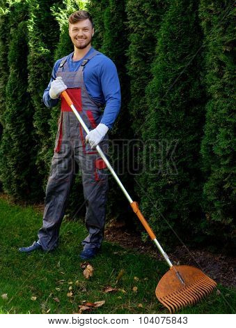 Gardener raking up leaves