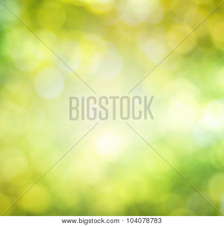 the green bokeh abstract light background