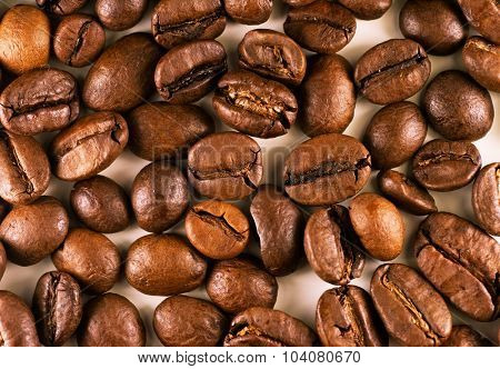 Roasted coffee bean close up.