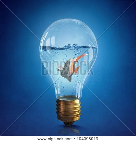 Exotic fish in water inside electric light bulb