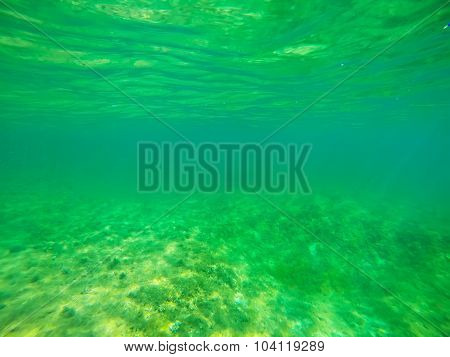 Green Water In Alghero