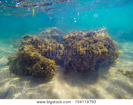 Yellow Rocks On A Sandy Sea Floor In Sardinia