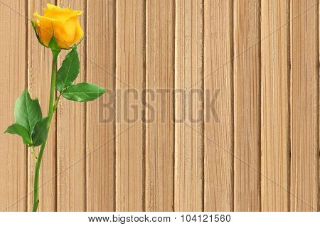 Yellow Beautiful Rose On Wood Texture Close-up