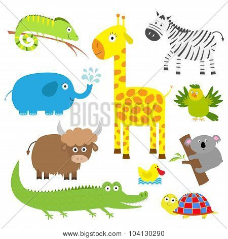 Cute Animal Set. Baby Background. Koala, Alligator, Giraffe, Iguana, Zebra, Yak, Turtle, Elephant, D