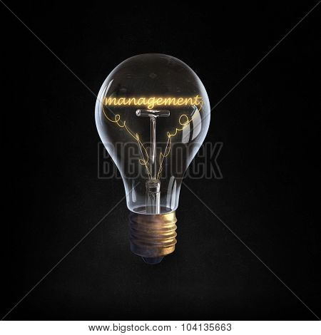 Glowing glass light bulb with management word inside