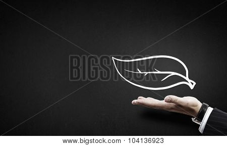 Close up of businessman hand holding drawn leaf