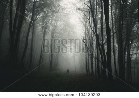 Silhouette of man in dark forest
