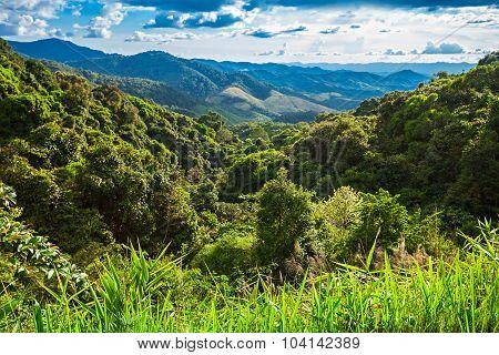 Nothern Thailand Landscape