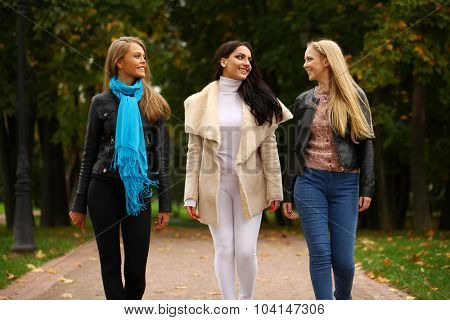 Three Young beautiful women walking in park, on yellow background autumn nature