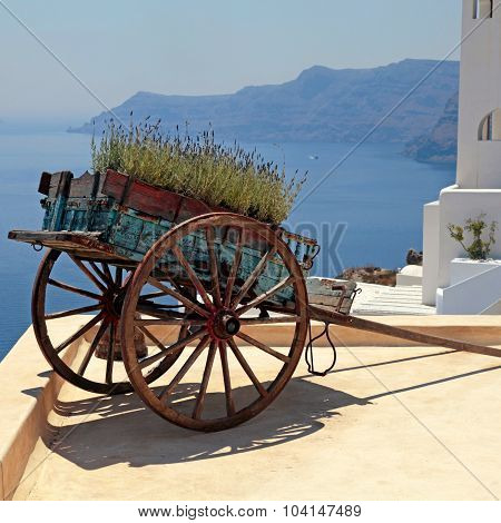 Decorative Old Cart With Flowers On Roof Terrace, Santorini, Greece