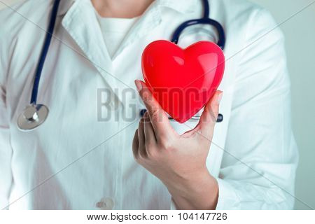 Doctor Hold Heart