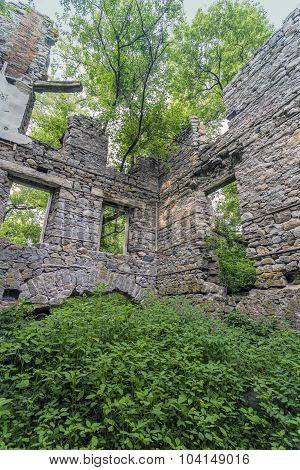 German's Woollen Mill Ruins taken over by nature.