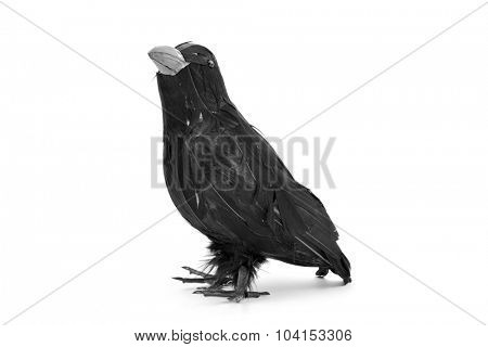 closeup of a fake black crow on a white background