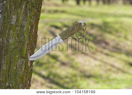 Self-made knife plunged into tree trunk