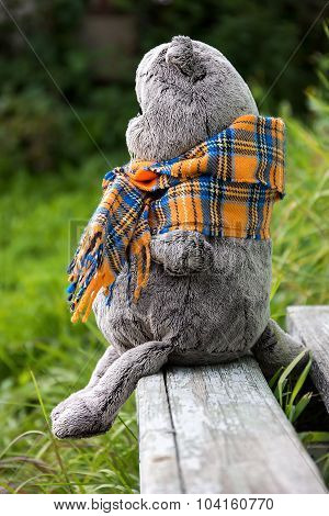 plush toy British cat sitting on a bench