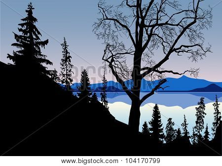 illustration with large bare tree near mountain lake