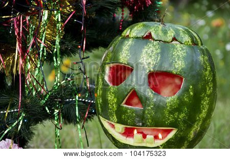 Halloweens Watermelon Under The Christmas Tree