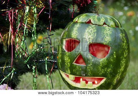 Halloweens Watermelon Under The Christmas Tree