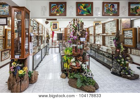World Insect Museum