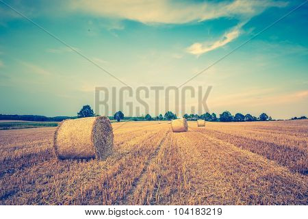 Vintage Photo Of Stubble Field With Bales