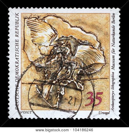 GDR-CIRCA 1973: A stamp printed in GDR shows Archaeopteryx lithographica, Natural History Museum Pieces, circa 1973.