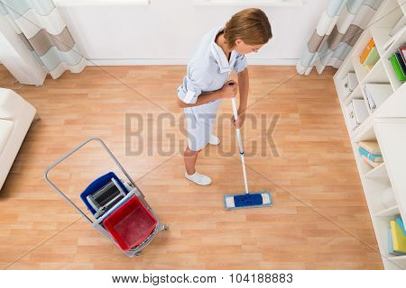 Female Cleaner Cleaning With Mop