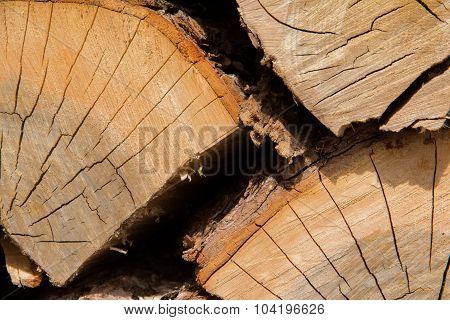 Wood Logs Close-up