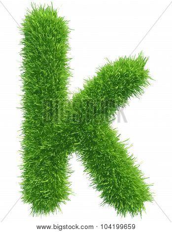 Vector small grass letter k on white background