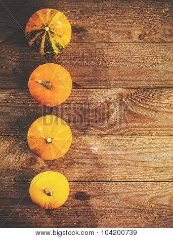 Autumn background with pumpkins on rustic wooden board. Thanksgiving and Halloween holidays concept. Harvest rural fall season. Space for your text.