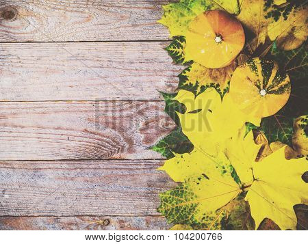 Autumn background with colorful leaves and pumpkins on rustic wooden board. Thanksgiving and Halloween holidays concept. Harvest rural fall season. Space for your text.